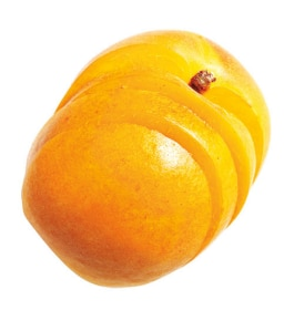 Tazo Website Apricot Ingredient
