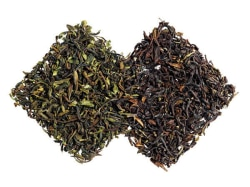 Tazo Website Green & Black Darjeeling Teas Ingredient