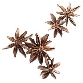 Tazo Website Star Anise Ingredient